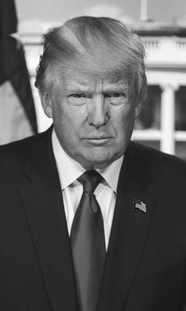 Portrait of Donald Trump